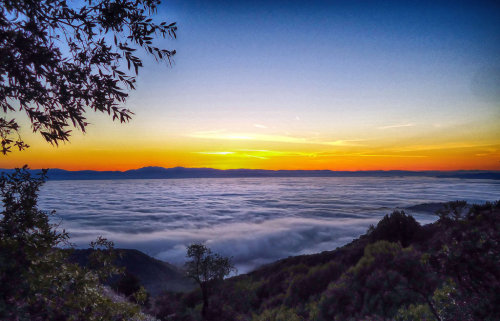 Montebello Sunrise#Sunrise #sky #skyline #clouds #hdr #hdri #sanjose #california #art #photography #nature #landscape(from @rsan on Streamzoo)