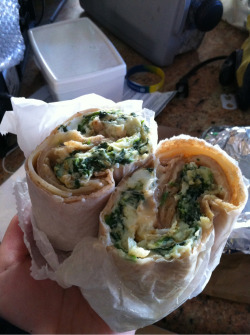 Today's lunch: Egg white, spinach and alpine lace Swiss cheese wrap <33333