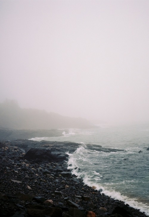 0rient-express:  untitled (by shaelan donovan).