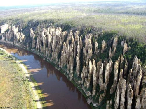 earth-phenomenon:  Lena Stone Pillars Russia One of the most beautiful natural wonders of Russia, Lena's Stone Forest is also one of the most difficult to reach,It lies in a part of Siberia not yet touched by civilization. Known also as Lena's Stone Pillars, this incredible rock formation is not only beautiful to look at, it's also holds important information on the formation of the organic world. Fossils from various organisms dating back to the Cambrian era could supply invaluable insight on life evolved on planet Earth.The amazing stone structures towers over 150 meters in height and extends along the river Lena for about 80km.