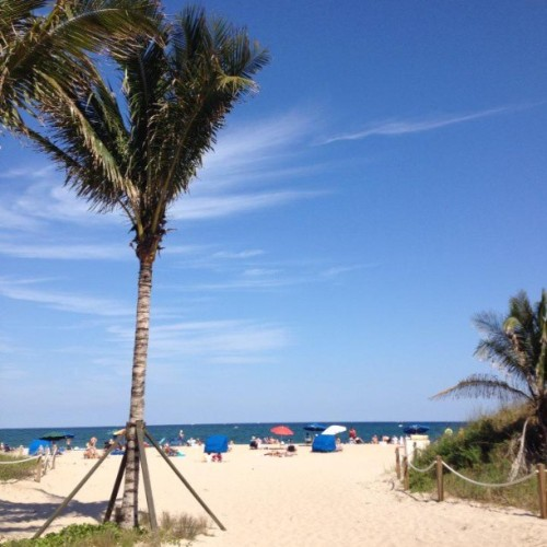 Love the Florida beaches. What about you? #Beach #Florida #SouthFlorida #FortLauderdale