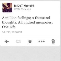A million feelings; A thousand thoughts; A hundred memories; One Life