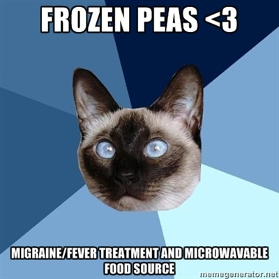 "[Image: 6-piece blue colored background with a Siamese cat.Text reads: ""Frozen Peas <3"" Bottom: ""Migraine/Fever treatment and microwavable food source""] On my head right now.To be eaten at minimal effort later."