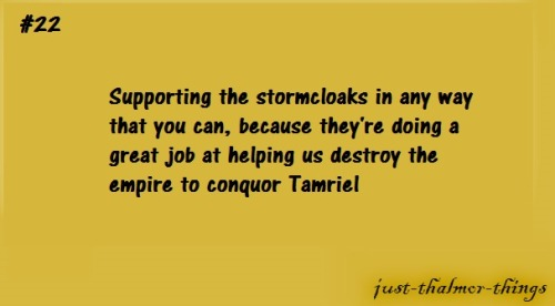 just-thalmor-things:  <3 luv you guise #stormcloakpride