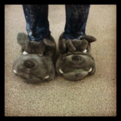 Cute bulldog slippers. Need to go back and get these. #cute #bulldog #DontHate