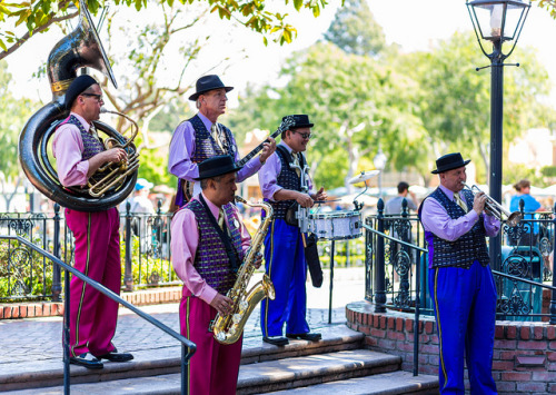 thatdisneyworldblog:  New Orleans Band by J Michel Photos on Flickr.