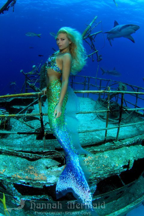 mermaids-and-anchors:  Hannah Mermaid facebook youtube iamamermaid twitter myspace