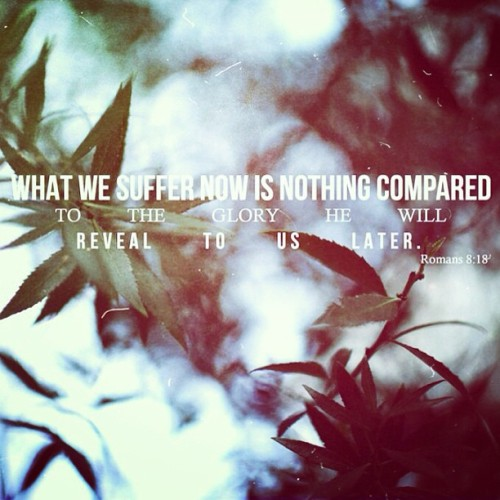 What we suffer now is nothing compared to the glory He will reveal to us later. [Romans 8:18]