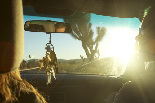 theroamingtree:  The Open Road by Matt Rose