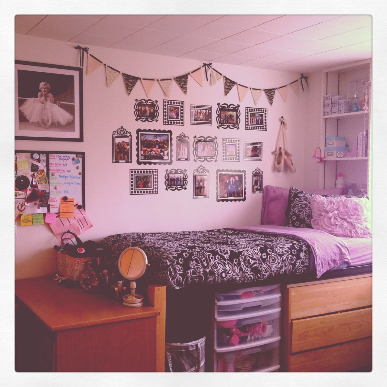 My Dorm Room