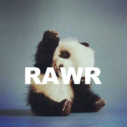 Pandas are my new animal obsession. They're so damn adorable! Lol