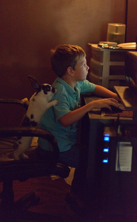 awwww-cute:  My nephew and pet bunny on his computer