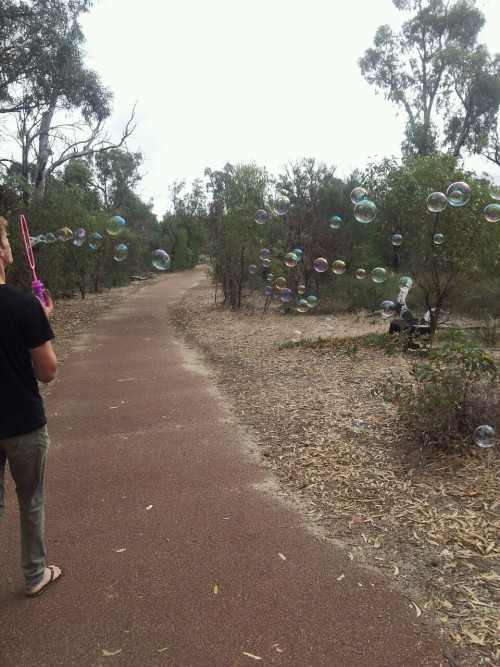 Going for walks is more fun with bubbles
