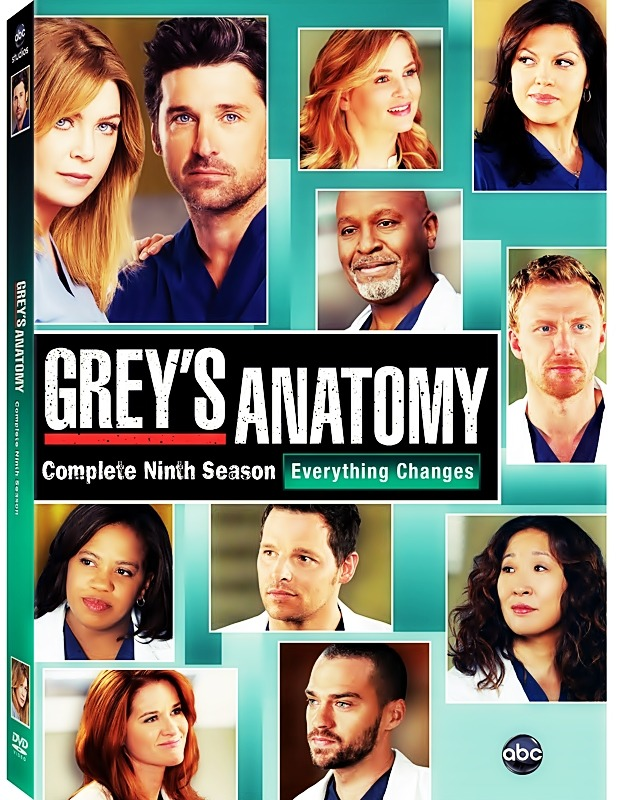 callizonamfeo:  Grey's Anatomy season 9 DVD cover