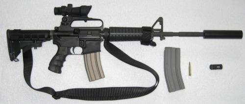 "This is the kind of Bushmaster .223 assault rifle that was used to murder 20 children and 6 adults in Sandy Hook this week. It is also the same kind of assault rifle used in the DC sniper shootings, the recent shooting in Colorado, and by troops in Afghanistan. In Connecticut, each victim was hit more than once — and the medical examiner told the Times that the wounds were ""all over, all over."" There is no reason that anybody needs a weapon of this caliber for anything but warfare. Perhaps Gail Collins put it best: ""Every country has a sizable contingent of mentally ill citizens. We're the one that gives them the technological power to play God."""
