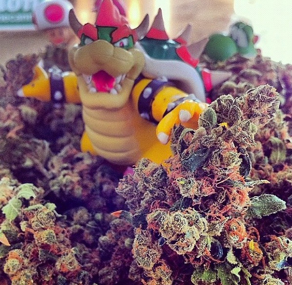caliweeed420:  awesome