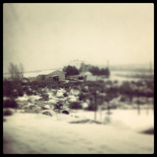 Snoooooowy.  (at City of Eagle Mountain)