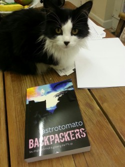 My cat, Winston,  has great pleasure in presenting the paperback version of my latest novel.