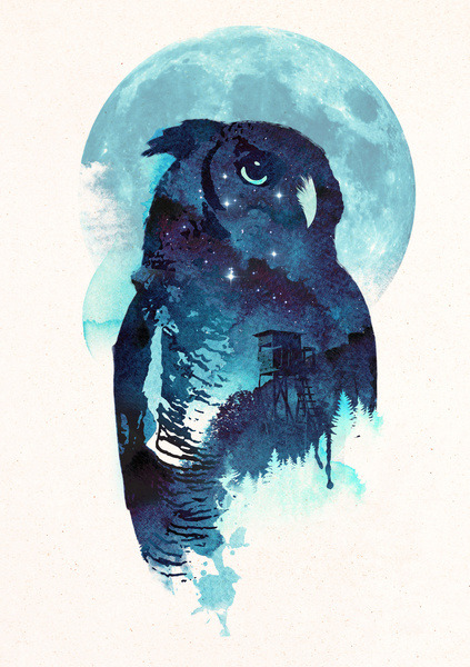 uvec:   Midnight Owl by Robert Farkas