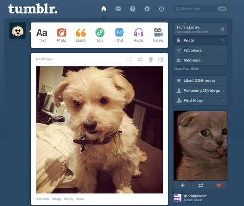 justbeingseriouslysocial:  Dashboard Coincidences on Tumblr (via lexkap.com)