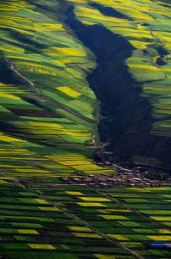 Babao, Qinghai, China | by Melinda