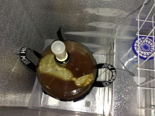 The Flying Dog Imperial Citra IPA made it to 1.014 after 12 days at 69 degrees. That puts the ABV at 9.1 so far. Now it dry hops at 50 degrees for 10 days, so it may go down another point or so.  I need to have this kegged and carbonated for a party on 6/2, or I'd let it sit a little longer. I'll probably add gelatin when I keg to clear it up faster.