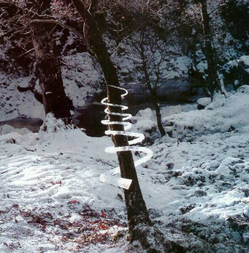 cryingss:  christophersantoso:  By Andy Goldsworthy  this man is a genius you guys should go watch  Rivers and Tides: Andy Goldsworthy Working with Time