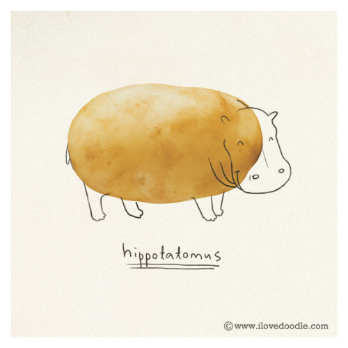 hippotatomus on Flickr.Doodle Everyday 383Website / Facebook / Twitter / Tumblr / Etsy