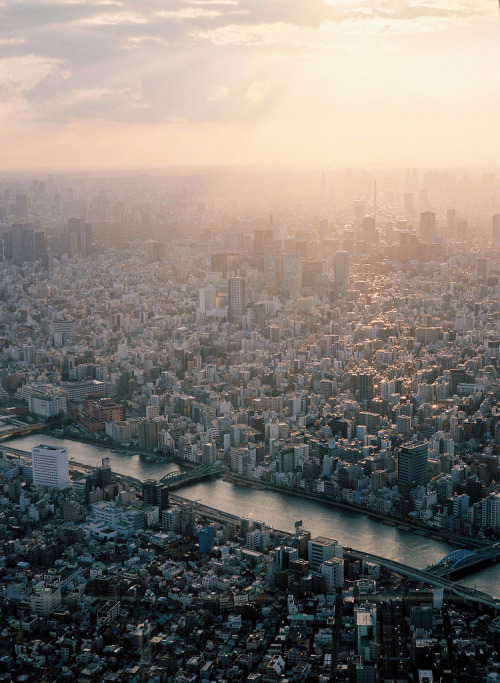 architectureland:  naturae:  A Sunset of Tokyo by Urarin  That's the way humans live.