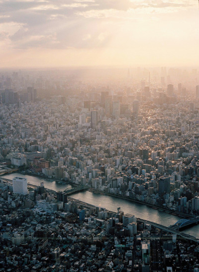 prngrphy:  refluent:  A Sunset of Tokyo (by urarin)  I would like to live here for a while plz
