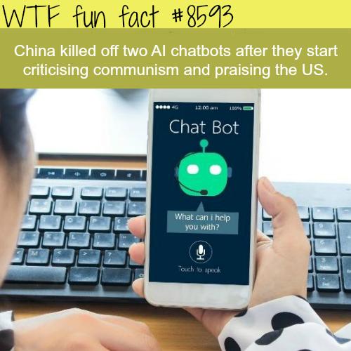 china chatbot facts usa communism