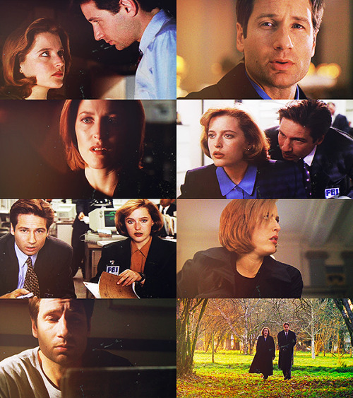 lagerthalothbrook:  Fangirl Challenge:4/10 TV Shows » The X-Files