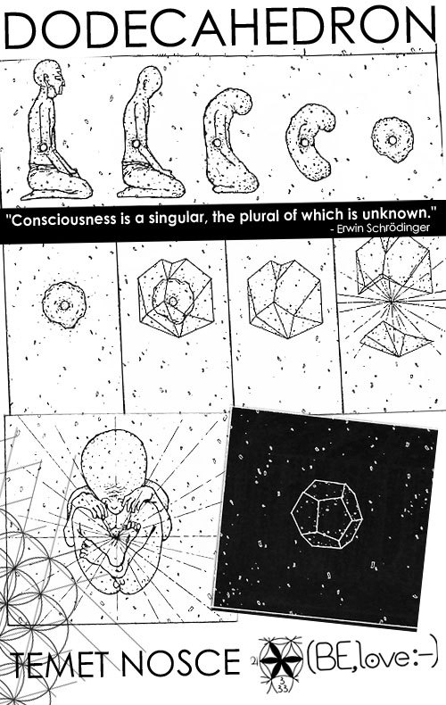 """Consciousness is a singular, the plural of which is unknown."" - Erwin Schrödinger."