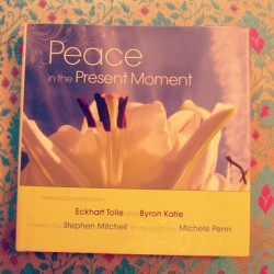 "#tranquil_tuesday : #سلام  #كتاب  #book #peace at the present moment , I love this book soo much , I would keep reading one page again and again the whole  day , meditate and investigate each word .. It's an eye opener , today the #quote I stopped at was from the #awareness section  by Byron Katie which she says in: "" Sanity doesn't suffer, ever. A clear mind is beautiful and sees only its reflection. It bows in humility to it self; it falls at its own feet. It doesn't add anything or subtract anything; it simply knows the difference between what's real and what's not. And because of this, danger isn't a possibility. A lover of what [is] looks forward to everything : life, death, disease, loss, earthquake, bombs, anything the mind might be tempted to call ""bad"" . Life will bring us everything we need, to show us what we haven't undone yet. Nothing outside ourselves can make us suffer. Except for our unquestioned thoughts, every place is paradise.""  (at Corniche Al-Khobar)"