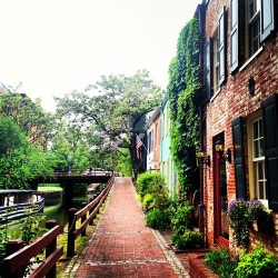 Rainy day wanderings in Georgetown ☔