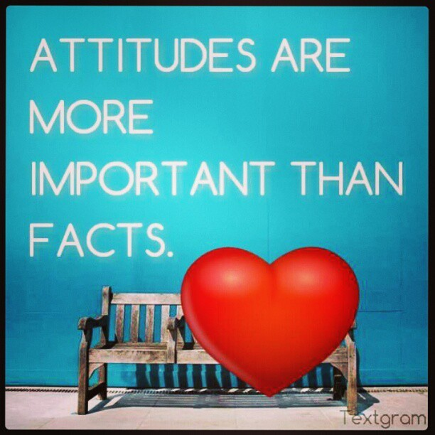 """Attitudes are more important than facts.""  - Karl Menninger"