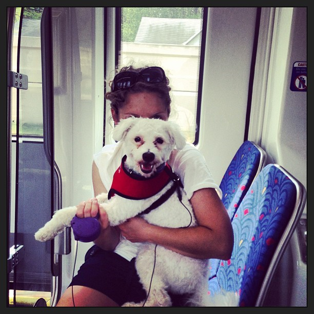 Benji's first train ride.