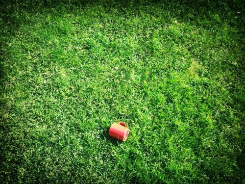 Mug in the grass at Aroeira by LMC on EyeEm