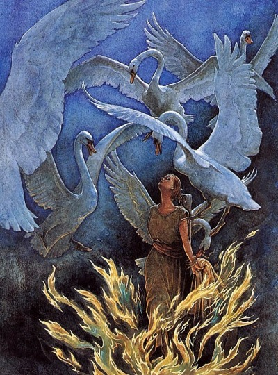"cosmic-storm:  ""The Six Swans"" by P.J. Lynch"