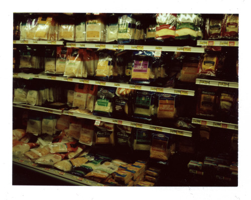 dsorich:  Cheese | Polaroid Land 103 | Fujifilm Instant 100C | David Sorich  What do you say to cheese when you're taking its picture??