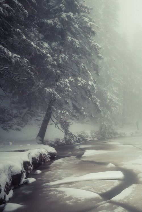 0rient-express:  ice and fog | by Daniel Hampel.