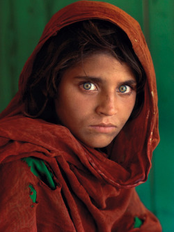 speechofangels:  (Famous Photo Flashback) Afghan Girl (Sharbat Gula), near Peshawar, Pakistan, 1984 - Photo by Steve McCurry