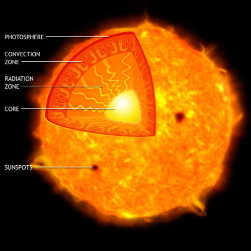 "thescienceofreality:  What's a Normal Star? ""Normal stars such as the Sun are hot balls of gas millions of kilometers in diameter. The visible surfaces of stars are called the photospheres, and have temperatures ranging from a few thousand to a few tens of thousand degrees Celsius. The outermost layer of a star's atmosphere is called the ""corona"", which means ""crown"". The gas in the coronas of stars has been heated to temperatures of millions of degrees Celsius. In medium-sized stars, such as the Sun, the outer layers consist of a rolling, boiling turmoil called convection. A familiar example of convection is a sea-breeze. The Sun warms the land more quickly than the water and the warm air rises and cools as it expands. It then sinks and pushes the cool air off the ocean inland to replace the air that has risen, producing a sea-breeze. In the same way, hot gas rises from the subsurface layers that extend to a depth of about 200,000 kilometers, cools at the surface and descends again."" Read more…"