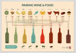 Wine & Food guide poster