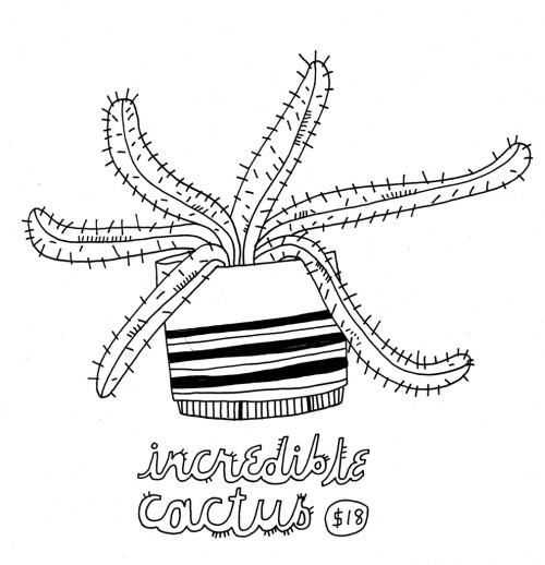 Daily Purchase Drawing for 12.28.12  Incredible cactus