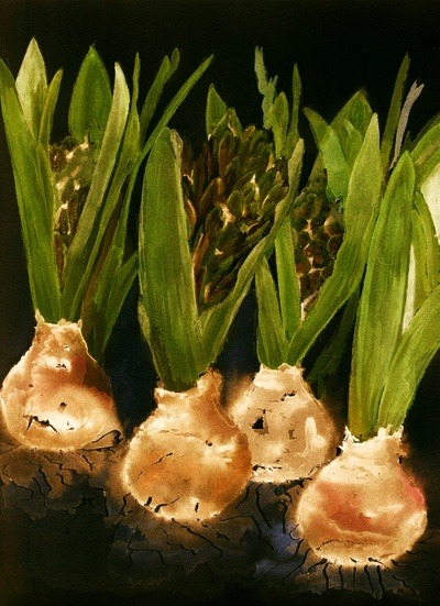 hyacinth Art Print by agnes Trachet | Society6 on We Heart It - http://weheartit.com/entry/57398110/via/akaclem