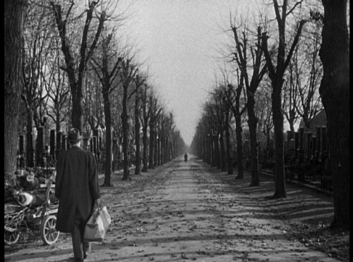 "On my eighteenth birthday, I forced my friends to watch The Third Man. There was another option—North by Northwest—and while I knew that would be a better choice, if only because of the action and Cary Grant, I wanted to watch my favorite film on my birthday, and I wanted everyone I knew to fall in love with it the way I had a few years before. I don't think this is an original feeling, but I think of this as the characteristic of Ebert's I most appreciated—he didn't mind if you disagreed, but at heart he wanted you to see what he saw. Ebert loved this movie too. The image above has been his background on twitter since, I believe, the very beginning, and he wrote of the ending back in 1996:  The final scene in ""The Third Man"" is a long, elegiac sigh. It almost did not exist. Selznick and Greene originally wanted a happy ending. (Greene originally wrote, ""… her hand was through his arm""). Reed convinced Greene he was wrong. The movie ends as it begins, in a cemetery, and then Calloway gives Holly a ride back to town. They pass Anna walking on the roadside. Holly asks to be let out of the jeep. He stands under a tree, waiting for her. She walks toward him, past him, and then out of frame, never looking. After a long pause, Holly lights a cigarette and wearily throws away the match. Joseph Cotten recalled later that he thought the scene would end sooner. But Reed kept the camera running, making it an unusually long shot, and absolutely perfect.  On my birthday, I just wanted my friends to love this. Instead, all but one of them fell asleep. It's okay. It's just fine for me to know Roger Ebert loved it too, and he was in the same boat often enough."
