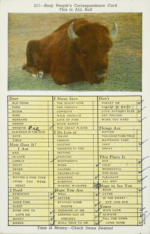openvaults postcard buffalo bull sweetiepie jake correspondence letter letter writing correspond check the box check archives post amon carter museum of american art amon carter museum amoncartermuseum amoncarter theamoncarter Amon G. Carter