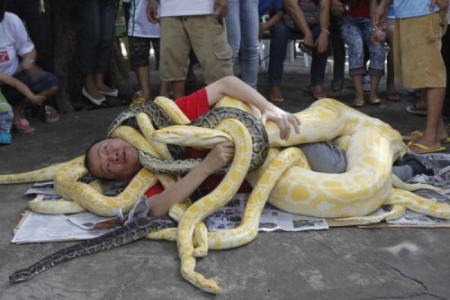 "Man Acts Out Your Nightmare by Covering Himself with Giant Snakes  ""And that's what drugs feels like"""