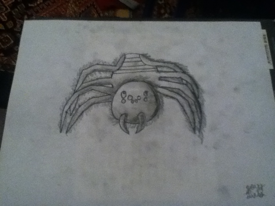 My friend asked me to draw a sexy tarantula So… Panties.